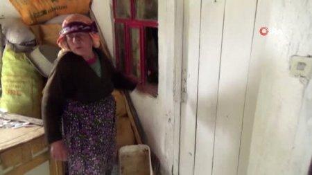 81 yaşlı nənə evinə girən oğrunu öldürdü